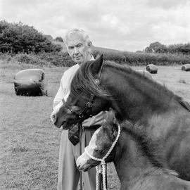 Dr Wynne Davies MBE. Phot Shot: Ceulan Stud, Miskin 19th August 2002. Place and date of birth: Talybont 1932. Main occupation: Breeder of Welsh Cobs / Judge / Writer. First language: Welsh. Other languages: English. Lived in Wales: Always.