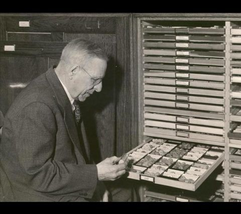 The American collector Frank Collins Baker in his collection.