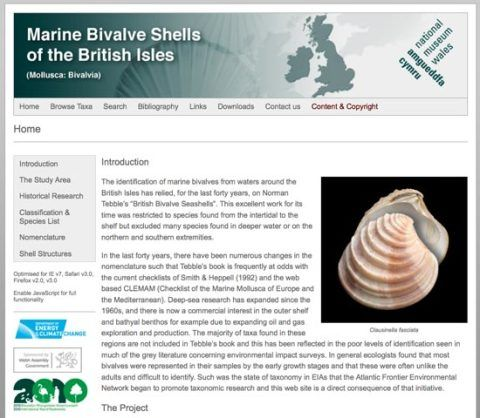 Marine Bivalve Shells and the British Isles