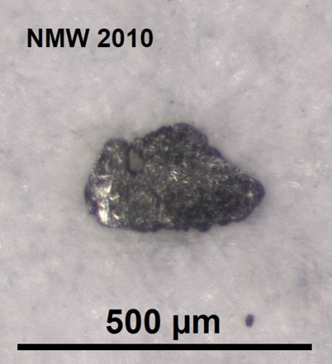 Pyroxene (scale: 50 microns)