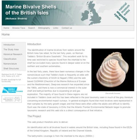 Marine Bivalve Shells of the British Isles web-site