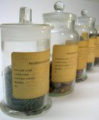 Some examples from the <em>materia medica</em> collection, stored in glass jars.