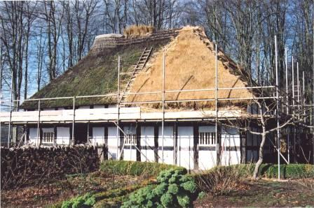 Re-thatching Abernodwydd roof at St Fagans National History Museum