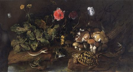 Still Life with a snake, frogs,tortoise and lizard (oil on canvas)