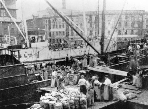 Women unloading potatoes, West Bute dock, 1910 (b/w photo)