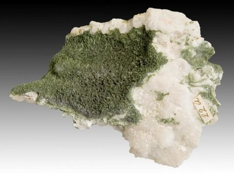 Olivenite on quartz from Cornwall, given to Henrietta by the Countess of Aylesford. Specimen 9 cm long. NMW 29.311.GR.80.