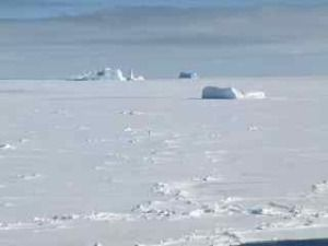 Icebergs in the Ross sea, pack ice