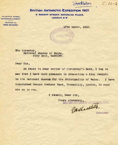 Letter from Sir Ernest Shackleton to the Director of the Museum.