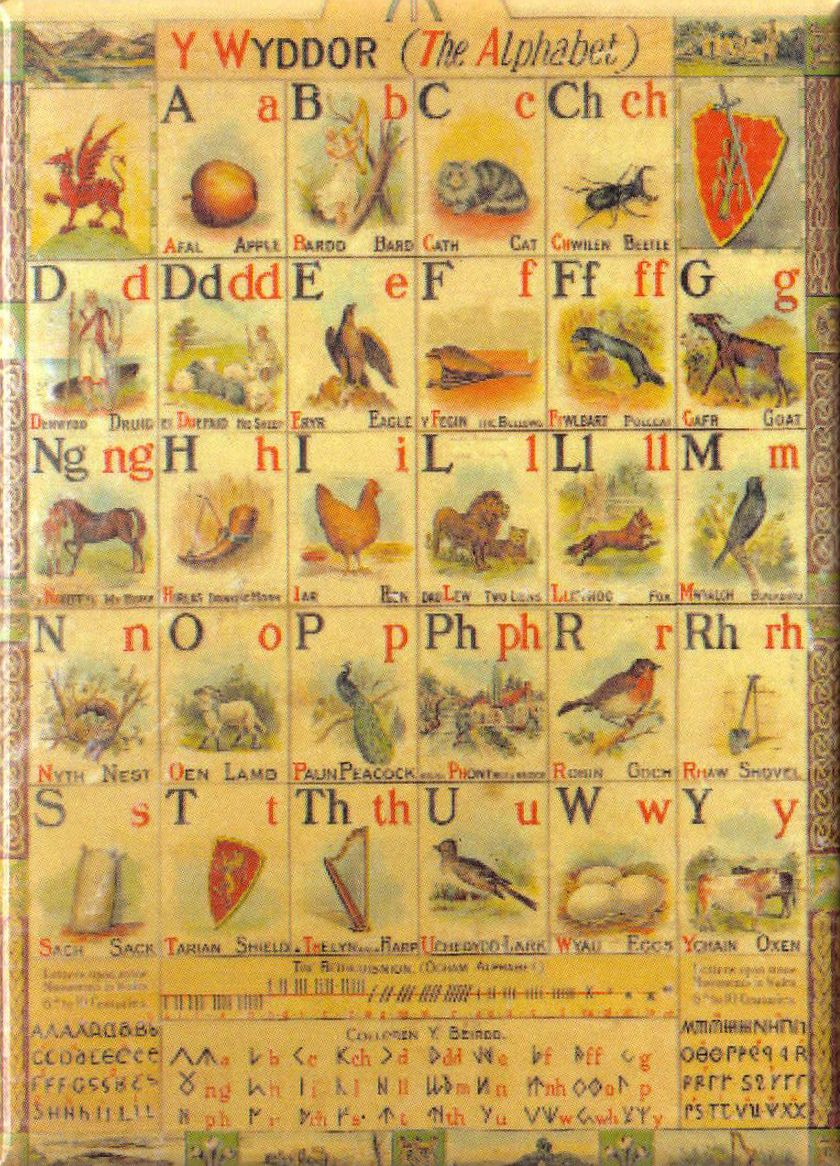 Welsh alphabet fridge magnet