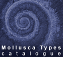 Mollusca Types Catalogue