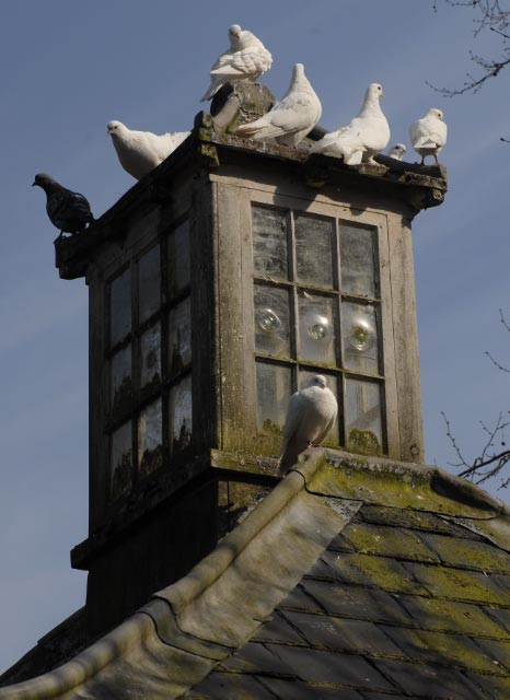The Dovecote at St Fagans National History Museum