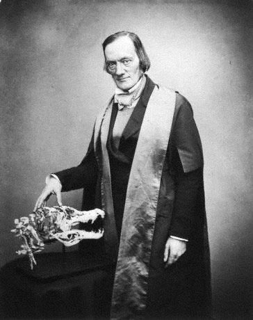 Sir Richard Owen in 1855 by Maull & Polyblank.