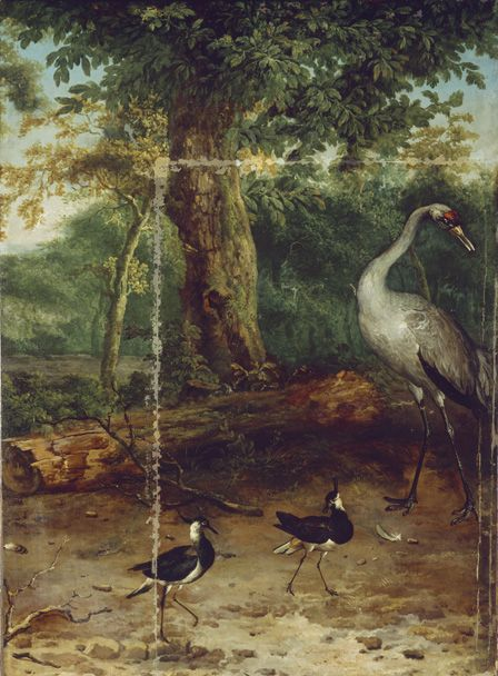 Birds in a Wood