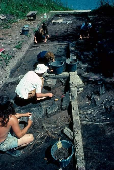Excavations at Llan-gors Lake in 1991. The textile was discovered in the silts beyond the oak palisade visible in this trench.