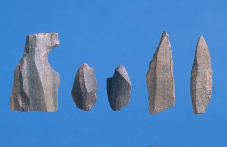 Stone tools from Rhuddlan (Denbighshire). Each tool is about 2.5cm (1 inch) long. A large quantity of stone tools was discovered at Rhuddlan during excavations in the medieval town.