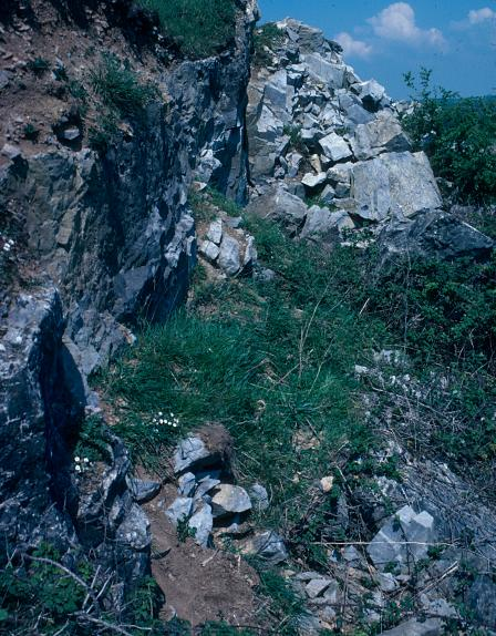 Coygan Cave (Carmarthenshire). No human remains have been