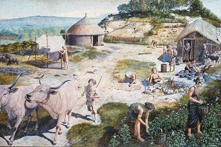 Reconstruction of daily life in Wales 6,000 years ago