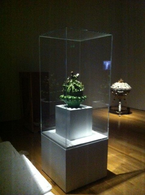 Display cases currently in the contemporary art space at National Museum Cardiff
