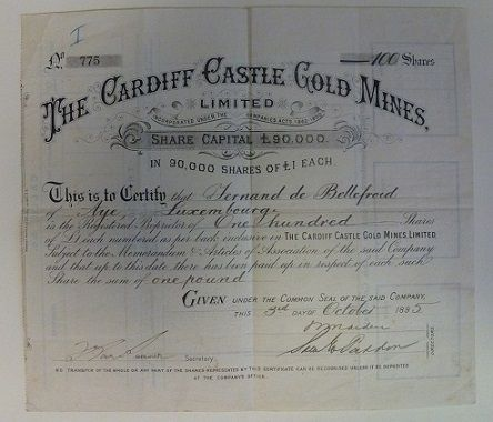 Cardiff Castle Gold Mines Limited share certificate, 1895