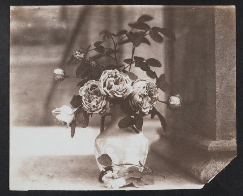 Salted paper print showing a vase of roses on the porch at Penllergare House, 1850s