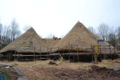 Thatched reconstructed roundhouses