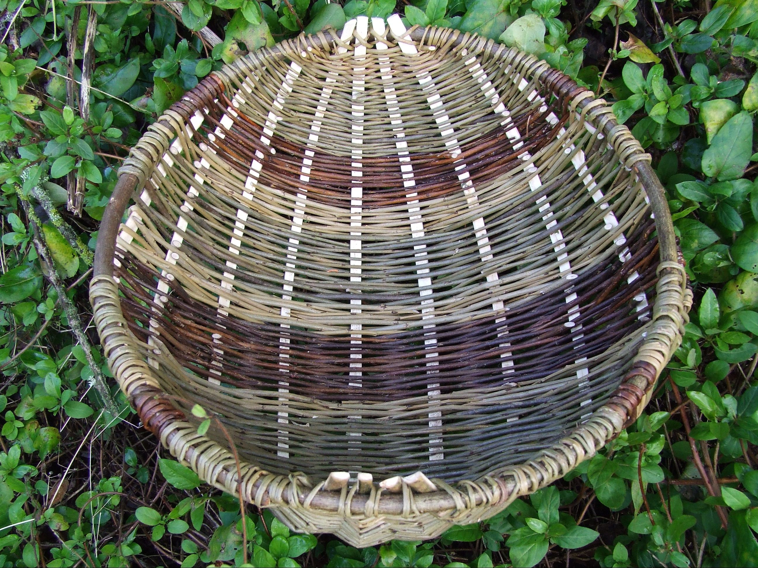 Simple Basket Weaving Willow : Willow weaving celtic frame baskets national museum wales