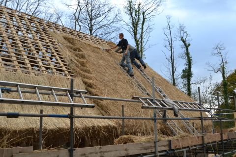 View of thatchers thatching the roof with straw.