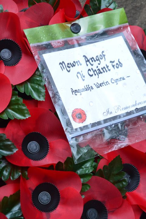 Picture of poppy wreath