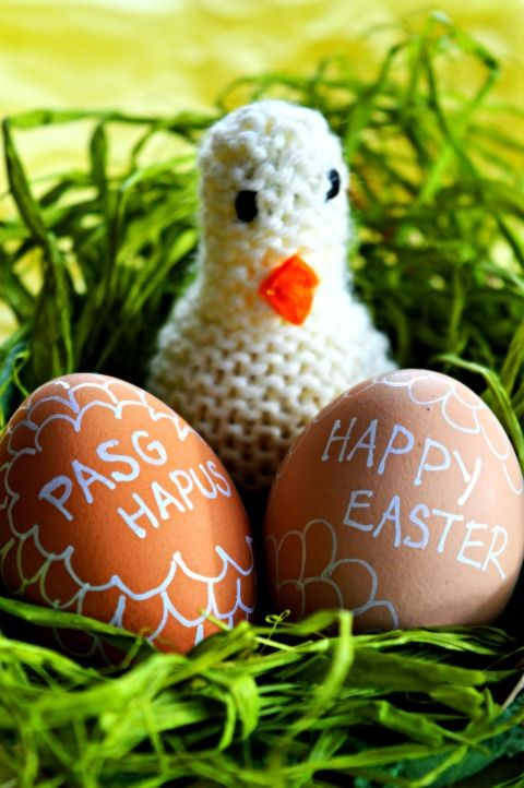 image:easter chick and eggs