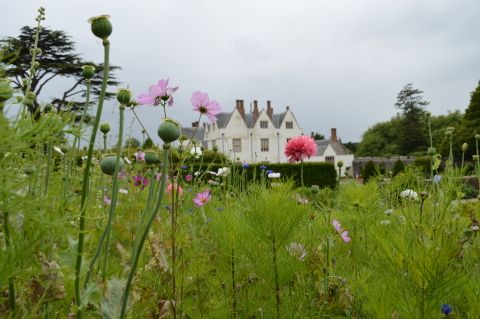 Image: St Fagans Castle with summer flowers