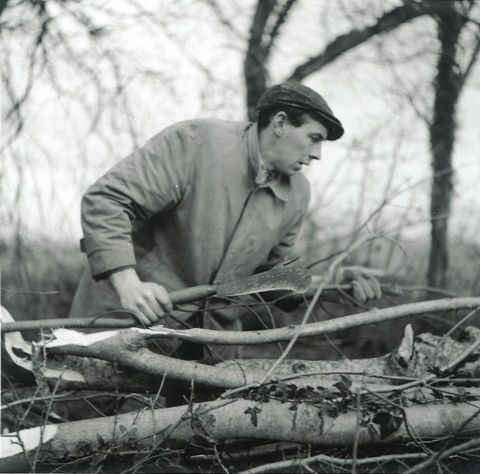 Image: Archive image of a man hedge-laying