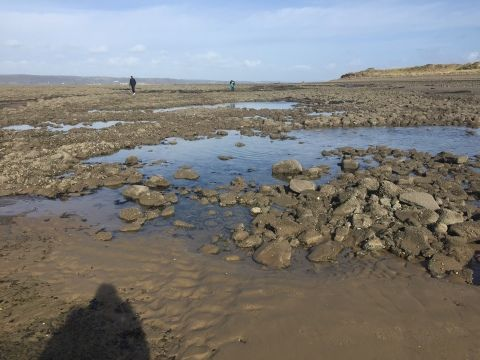 The images shows a beach on a spring day. It is a rocky beach which dates back to the mesolithic era.