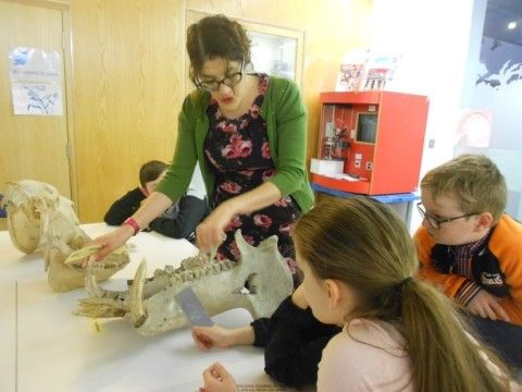 Photograph of a museum staff member showing children the jaw of a hippopotamus