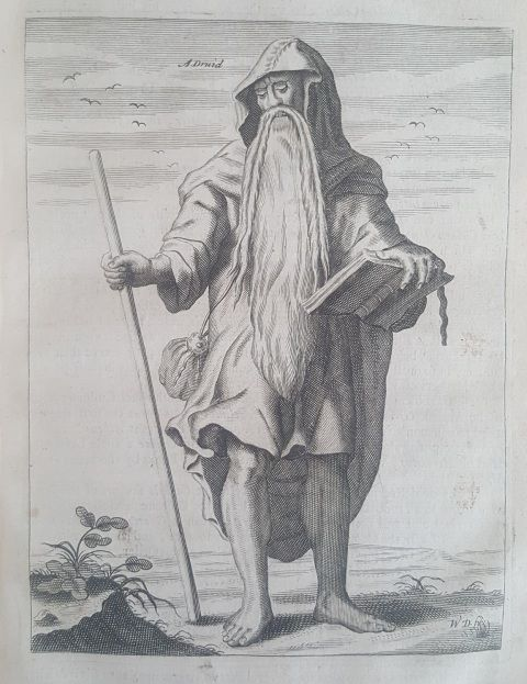 Image of a Druid by Aylett Sammes
