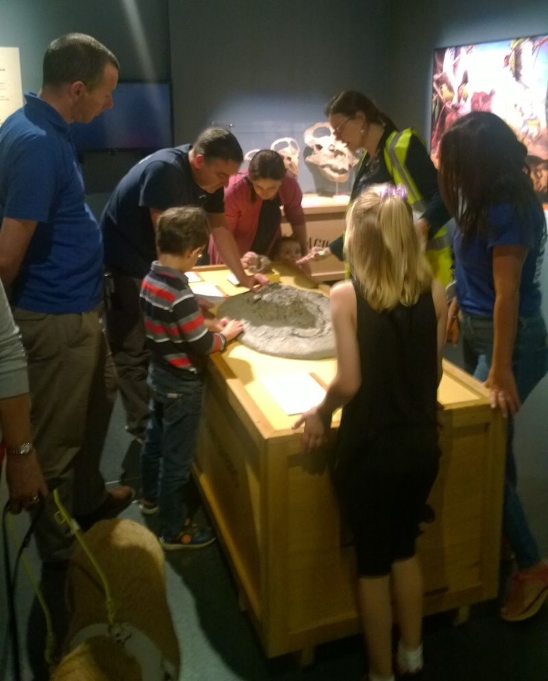Photograph showing a museum staff member leading a sensory tour of the dinosaur babies exhibition.