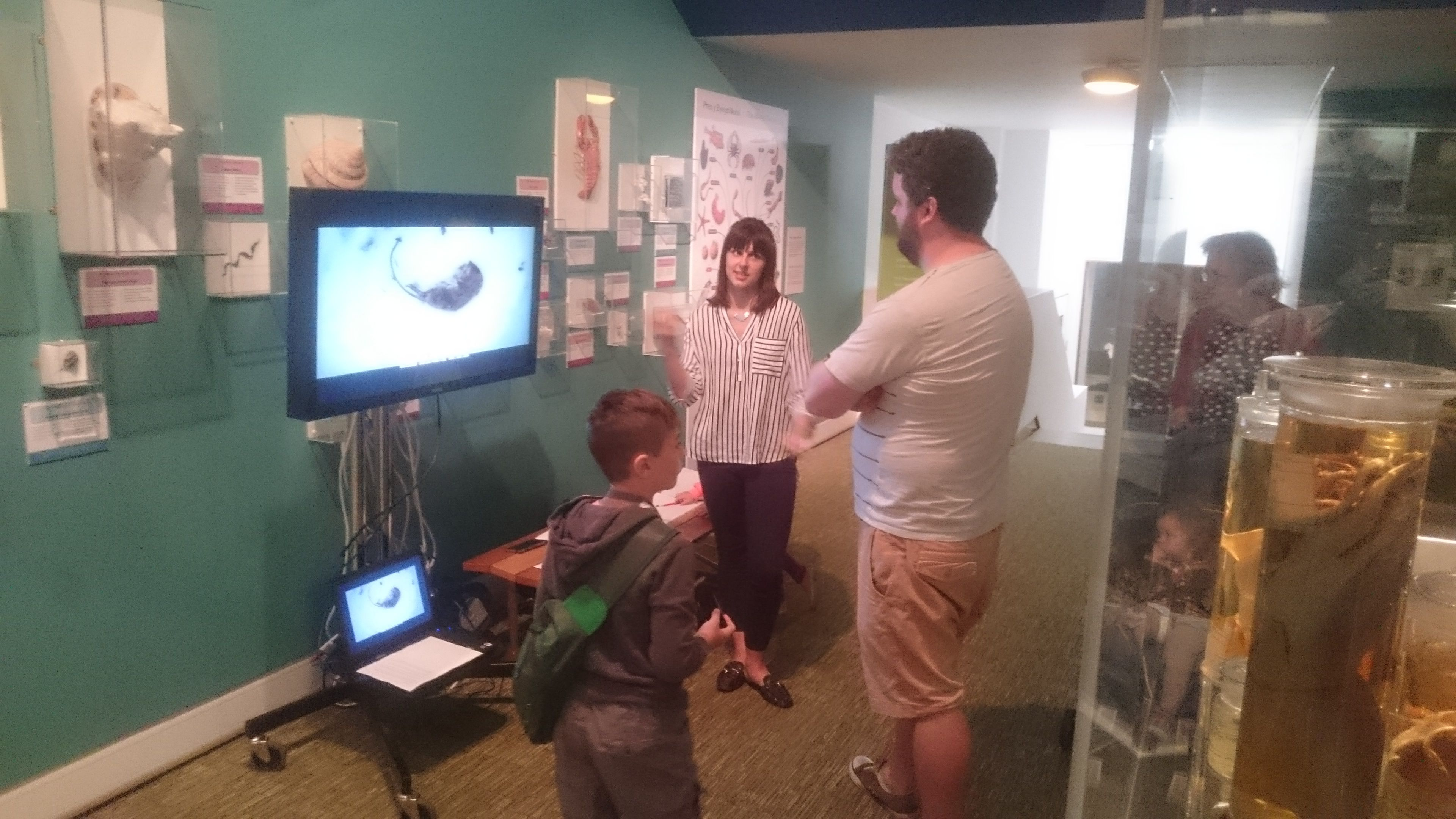 Charlotte Martin, UWE project student, undertaking museum user evaluation of time lapse video.