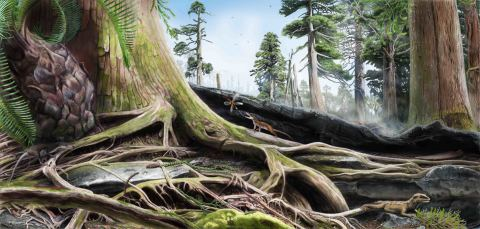 A reconstruction of the Jurassic landscape by artist James Brown, can you spot the tiny animals? ©James Brown