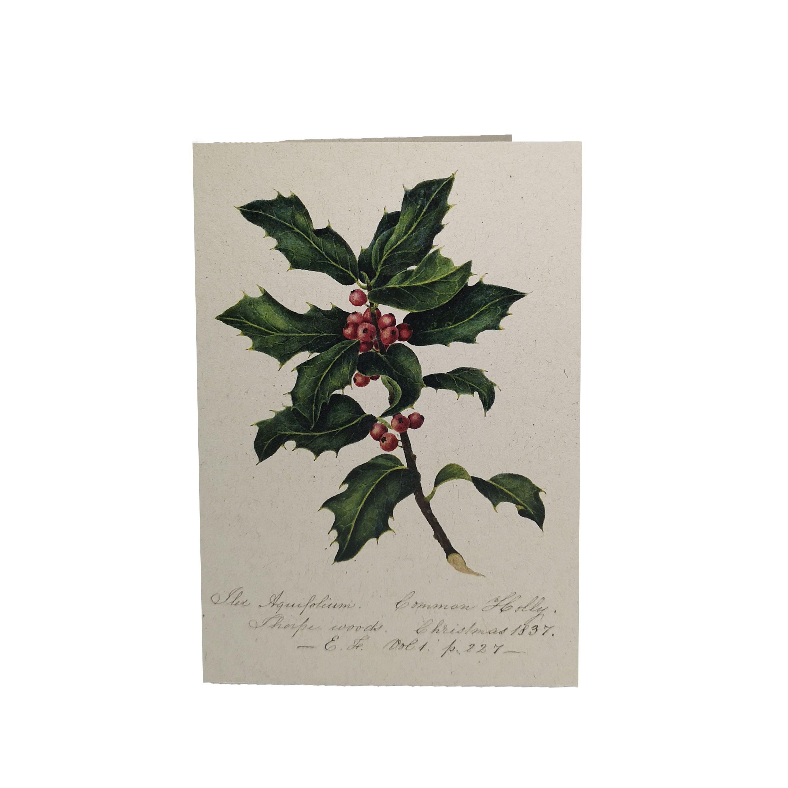 Christmas Cards | Shop