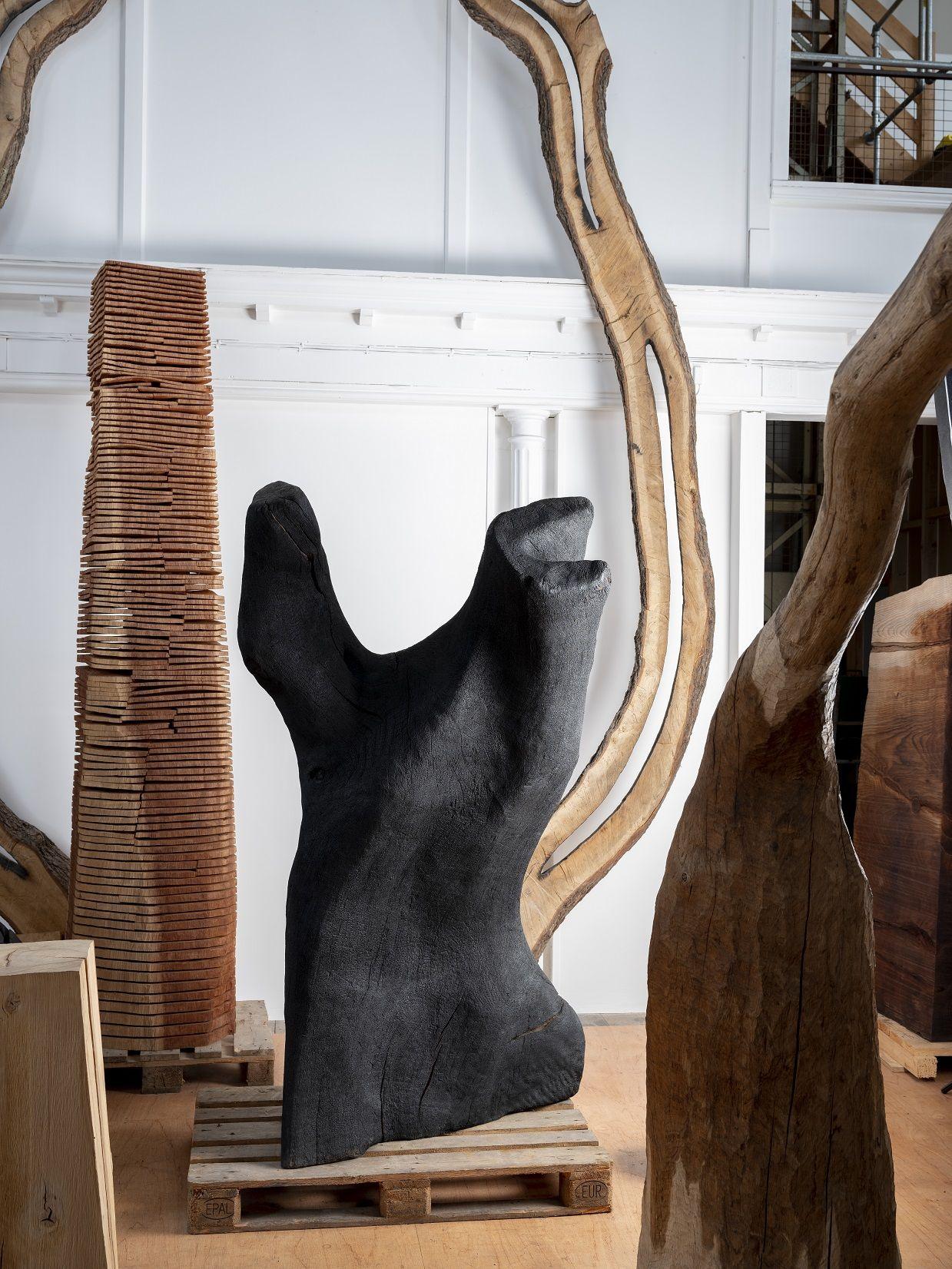 A Rotating 42-Layer Sculpture of Franz Kafkas Head by