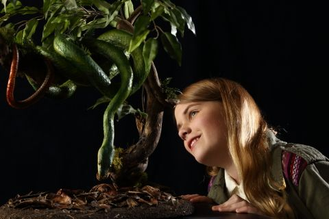photo: girl and tree python