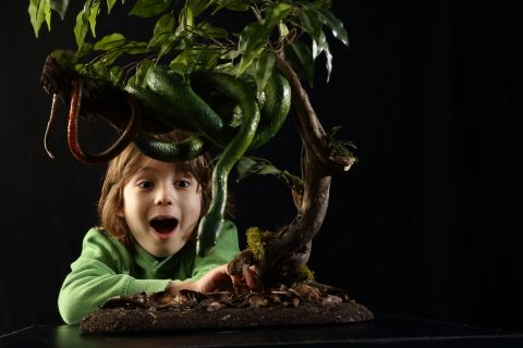 photo: boy and tree python