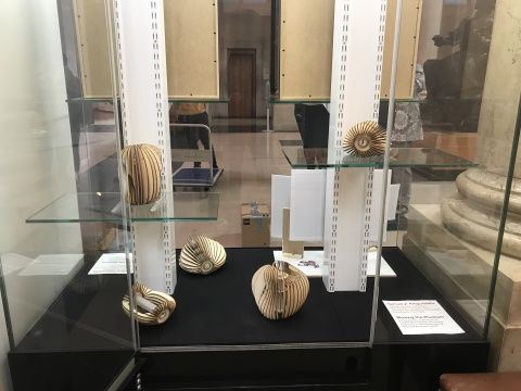 Photo of slatted wooden light shades in a display case