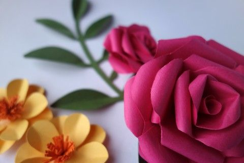 Image: Paper flowers