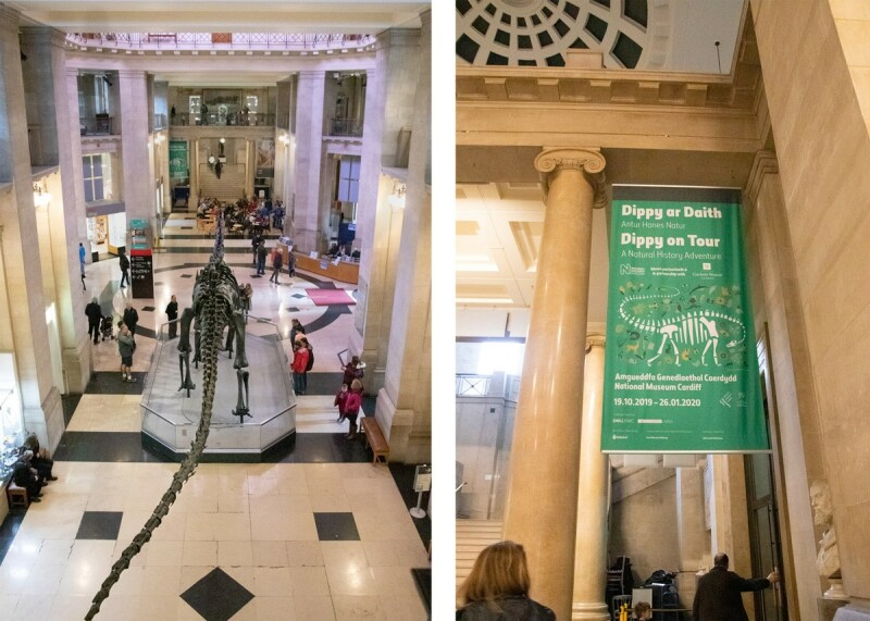 two photos die by side. On the left is a picture looking down on Dippy from the balcony above its tail. On the right is a photo of a green banner advertising the exhibition