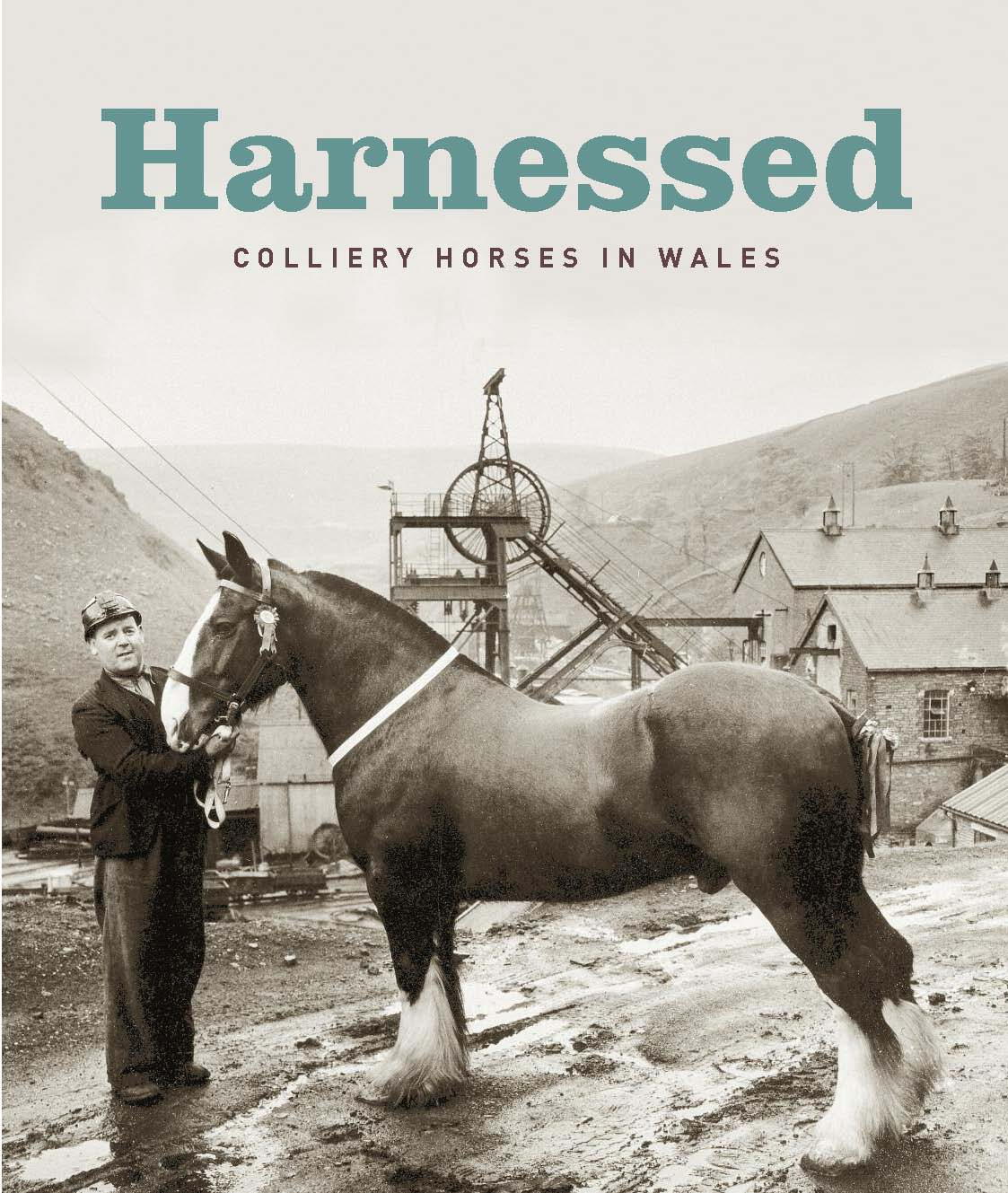 Harnessed: colliery horses in Wales