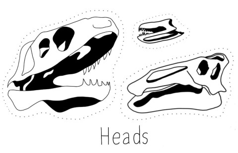 Ink illustrations of three dinosaur skulls and the word Heads