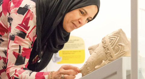 Visitor looking at a carved stone head in a museum display