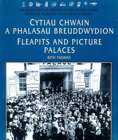 Fleapits and Picture Palaces