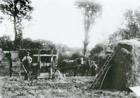 A hay press (an early form of baler) in use